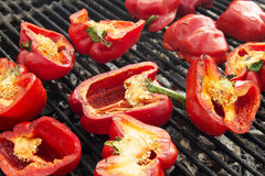 Red peppers on the Grill Royalty Free Stock Photos