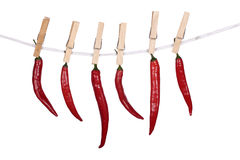 Red Peppers hanging on a rope Stock Images