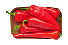 Red peppers isolated stock images