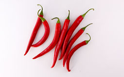 Red peppers isolated on a white background. Red chili peppers Concept and Decoration stock photography