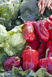 Red Peppers at the Market Royalty Free Stock Image