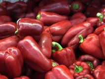 Red peppers stock photos
