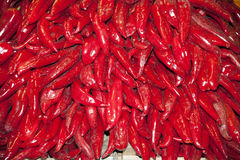 Red peppers on market stall Stock Images