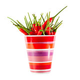 Red peppers in a mug isolated Stock Images