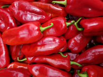 Red Peppers - perfect Royalty Free Stock Images