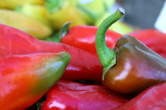 Red Peppers. Provide zip to any recipe Royalty Free Stock Photos
