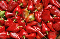 Red peppers ready for sale Royalty Free Stock Images