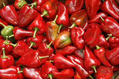 Red peppers ready for sale Royalty Free Stock Photography