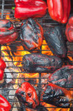 Red peppers roasting on the barbecue Royalty Free Stock Images