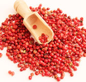 Red peppers seeds Royalty Free Stock Photos