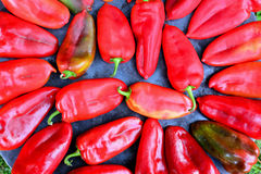 Red peppers on sheet cooker close up Royalty Free Stock Image