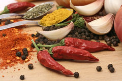 Red peppers and spices Royalty Free Stock Photo