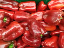 Red peppers vegetables. Waiting to be export Royalty Free Stock Photos