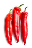 Red peppers on white background Royalty Free Stock Images