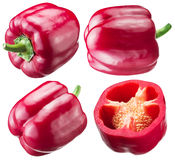 Red peppers on white background. Royalty Free Stock Images