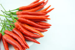 Red Peppers. For those who like spicy peppers Stock Photography