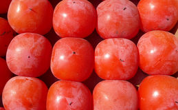 Red Persimmon Royalty Free Stock Photography