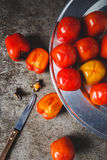 Red Persimmons Royalty Free Stock Photos