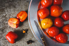 Red Persimmons Stock Photos