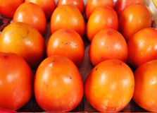 Red persimmons Stock Photography