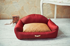 Red pet mattress with sofa and box at background Stock Photos
