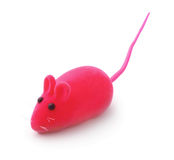Red pet toy mouse isolated. On white royalty free stock photo