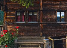 Red Petaled Flower by Porch of Brown Wooden House stock photography