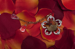 Red petals and necklace. Red rose petals and necklace Royalty Free Stock Photo