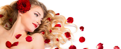 Red petals rose in hairstyle Stock Photos
