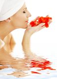 Red petals in water #2 Royalty Free Stock Photos