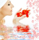 Red petals in water #3 Royalty Free Stock Photos