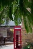 Red phone box In shadows under Spanish cedar Royalty Free Stock Image