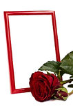 Red photo frame with  red roze. Red vertialy standinf photo frame behind red lying rose Royalty Free Stock Photos