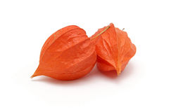 Red Physalis alkekengi - Cape gooseberry Stock Photo