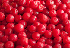 Red pickle cherry fruit Stock Photography