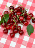 Red picnic cloth with cherry 7. Spring. picnic cloth with yummy cherry Royalty Free Stock Images
