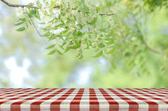 Red picnic table and nature background. Red picnic table and nature background with warm morning light tone for advertising and product display Royalty Free Stock Photos