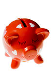 Red pig. royalty free stock images