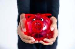 Red pig money box in the hands of a dark-skinned girl stock images