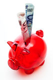 Red piggy bank with euro banknotes Stock Image