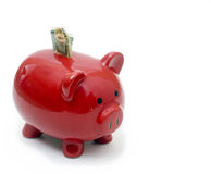 Red Piggy Bank side view. Red piggy bank stuffed with dollar bills Royalty Free Stock Images