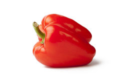 Red Pimento. With a White Background Stock Image