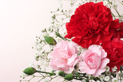 Red and pink Carnation Bouquet. (horizontal) Royalty Free Stock Photography