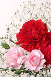 Red and pink Carnation Bouquet. (vertical) Stock Photos