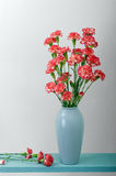 Red and Pink Carnations Stock Photos