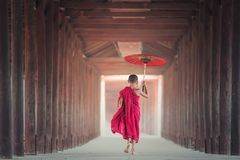 Red, Pink, Dress, Beauty Royalty Free Stock Images