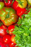 Red, pink and green tomatoes close up. The red, pink and green tomatoes close up royalty free stock photo