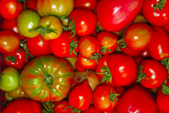 Red, pink and green tomatoes close up. The red, pink and green tomatoes close up stock photos