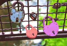 Red and pink heart-shaped padlocks Royalty Free Stock Photography