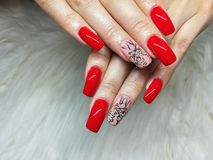 Red  painted  gel nails  manicure. Red and pink  painted  gel nails  manicure on white fur background stock photography